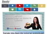 Sitio web de Treviño Computación