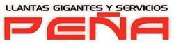 Llantas Gigantes y Servicios Peña, S.A. de C.V