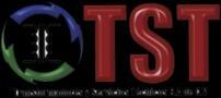 Transformadores y Servicios Tecnicos S.a. De. C.v.