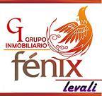 Grupo Inmobiliario Fenix