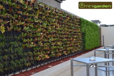 Innovare design quer taro calzada de los arcos 173a for Materiales para un muro verde